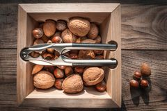 坚果品种有胡桃钳的在与金属胡桃钳的木背景 免版税图库摄影