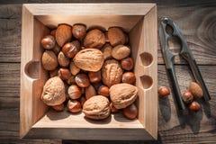 坚果品种有胡桃钳的在与金属胡桃钳的木背景 免版税库存照片