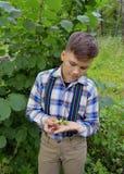 坚果在一个男孩的手上在森林男孩,自然,庭院,孩子,年轻人,绿色,户外,夏天,植物,从事园艺,花, gras 免版税图库摄影
