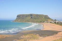 坚果塔斯马尼亚岛 免版税库存照片