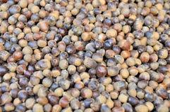 坚果壳是待售在一个地方市场上在越南 库存照片