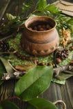 坚果春天收获在棕色cruse的 免版税库存图片