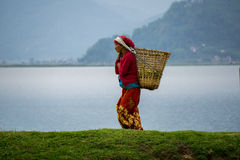 坚硬职业妇女运载的果子 免版税库存照片