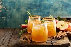 坚硬苹果汁鸡尾酒用秋天香料 库存照片