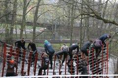 坚韧北欧海盗2015年哥特人瑞典 库存照片
