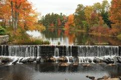 水坝和叶子 免版税库存照片