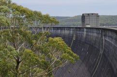 水坝墙壁和树 免版税库存图片