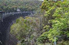 水坝墙壁和树 免版税图库摄影