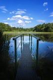 从水坝的池塘 免版税库存图片