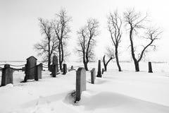 坟园在多雪的冬日 免版税库存图片