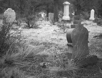 坟园在森林 免版税库存图片