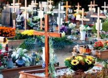 坟园 库存图片