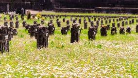 坟墓和雏菊 免版税库存照片