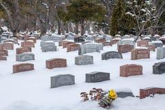 坟墓在大雪,蒙特利尔,魁北克,加拿大下的皇家山公墓 库存图片