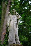 坟墓 库存照片