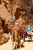 坟茔在岩石在Petra,约旦雕刻了 库存照片