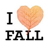 坠入爱河-秋天与叶子心脏形状的销售海报和在白色背景的简单的文本 免版税图库摄影