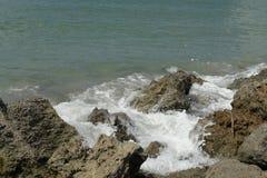 坦帕湾的海 库存图片