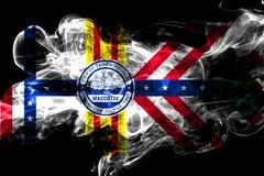坦帕,佛罗里达五颜六色的抽烟的旗子2018年 向量例证