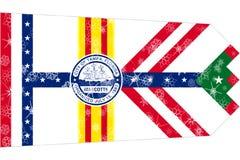 坦帕,佛罗里达冬天雪花旗子背景 美国状态团结了 库存例证