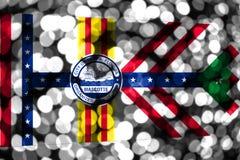 坦帕,佛罗里达抽象模糊的bokeh旗子 圣诞节、新年和国庆节概念旗子 美国状态团结了 库存例证