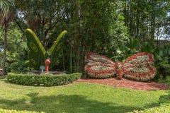 坦帕,佛罗里达- 2015年5月05日:花在Busch庭院坦帕湾 佛罗里达 免版税库存图片