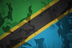 坦桑尼亚的旗子卡其色的纹理的 装甲攻击机体关闭概念标志绿色m4a1军用步枪s射击了数据条工作室作战u 免版税库存图片
