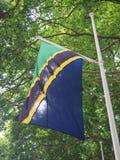 坦桑尼亚的Tanzianian旗子 库存图片
