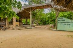 坦桑尼亚-塞卢斯禁猎区 免版税库存图片