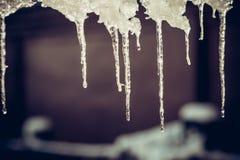 垂悬下来从屋顶的冬天冰柱 免版税图库摄影