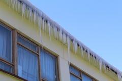 垂悬从一个大大厦的屋顶的冰柱 图库摄影