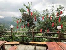 垂悬从一个树龙脊大阳台的灯笼在桂林,中国 库存图片