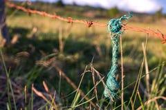 垂悬从一个生锈的倒钩的绿色绳索架线 免版税图库摄影