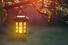 垂悬从树枝的燃烧的灯笼 免版税图库摄影