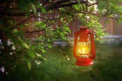 垂悬从树枝的燃烧的灯笼 库存照片