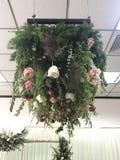 垂悬从空气的花束 库存图片
