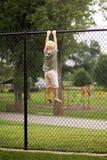 垂悬从高链节篱芭的小男孩孩子尝试对分类 免版税库存照片