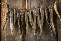 垂悬在一条线的干鱼,在老委员会 库存照片