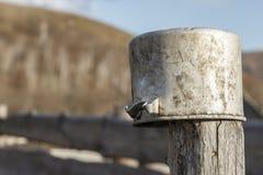 垂悬在一根木柱子的老铝平底深锅户外 被弄脏的拷贝空间 免版税库存图片