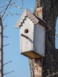 垂悬在一棵树的手工制造鸟舍在果树园 免版税图库摄影