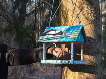 垂悬在一棵树的美丽的木鸟舍饲养者(嵌套箱)在公园 照顾动物 喂养鸟 免版税库存照片
