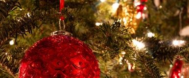 垂悬在一棵被点燃的圣诞树的一件红色球装饰品 库存图片