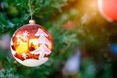 垂悬在与发光的阳光的树的橙色圣诞节球 库存图片