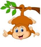 垂悬在与赞许的一个树枝的逗人喜爱的猴子动画片 免版税图库摄影