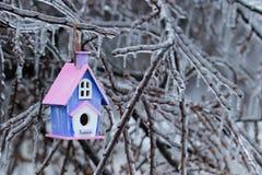 垂悬在冰川覆盖的树枝的鸟舍 免版税库存图片
