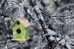 垂悬在冰川覆盖的树枝的鸟舍 库存照片