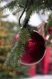 垂悬在冷杉分支的圣诞节红色球 图库摄影