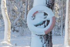 垂悬在冷漠的风景的一棵树的救生圈 免版税库存照片