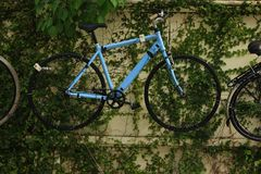 垂悬在墙壁上的蓝色自行车 库存图片