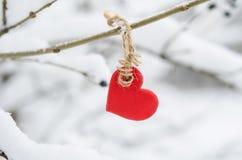 垂悬在多雪的树早午餐的红色心脏 库存图片